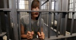 This image from http://freebieber.org/ is one of many being used to campaign against a new law that would criminalize some kinds of copyright infringement.