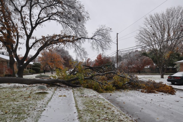 Street in Dallas blocked by fallen tree ice storm Dec. 2013