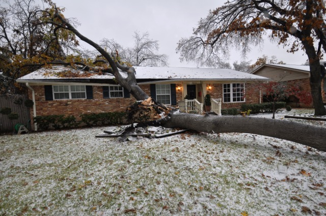 Home damaged by falling tree in Dallas ice storm 2013