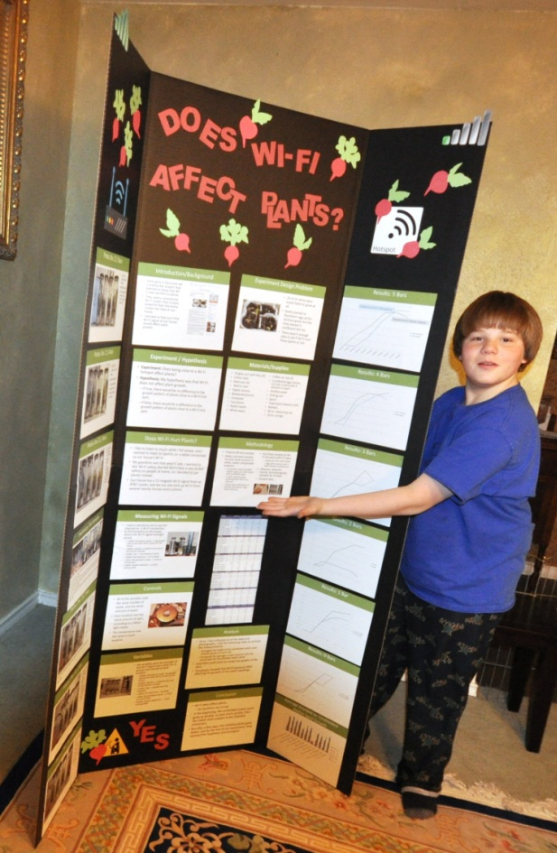 First Place Science Fair Projects For 6th Grade